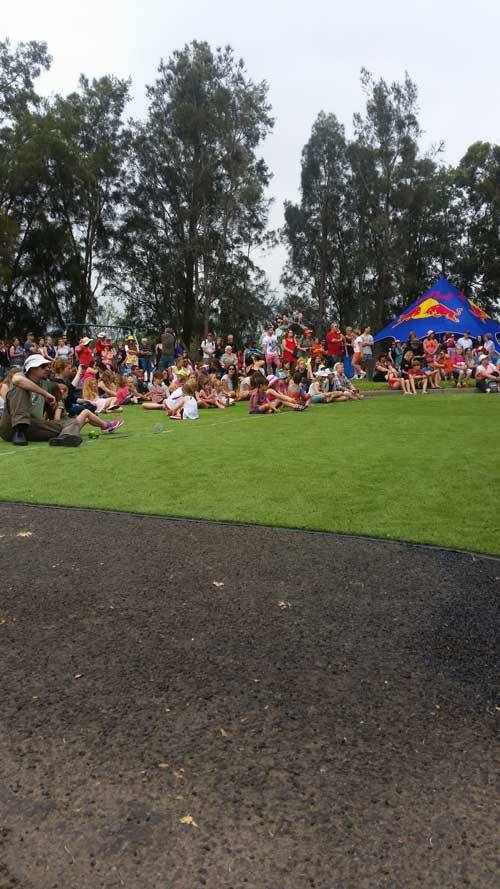 Shoalhaven River Festival - synthetic grass